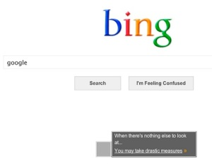 Bing_Basic